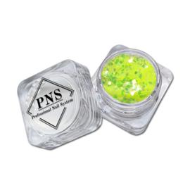 PNS Paillets 02
