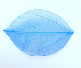 PNS Inlay Leaf 14