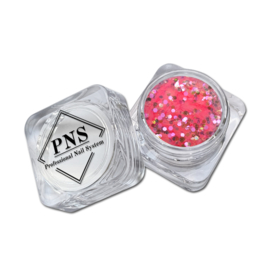 PNS Paillets 05
