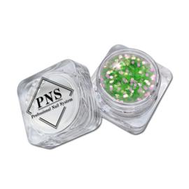 PNS Paillets 09