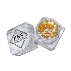PNS Paillets 03