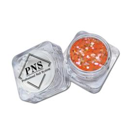 PNS Paillets 04