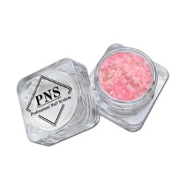 PNS Paillets 06
