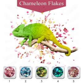 PNS Chameleon Flakes 1 t/m 5