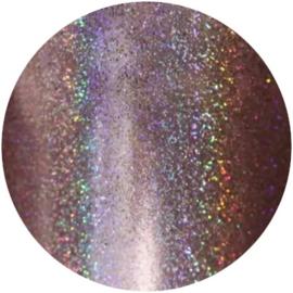 PNS Holo Rainbow Glitter 3