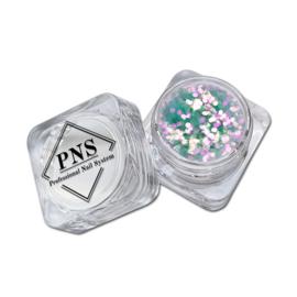 PNS Paillets 10