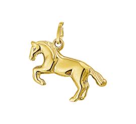 Gouden hanger paard