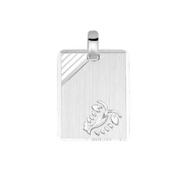 Zilveren graveerplaatje sterrenbeeld kreeft 14 x 19 mm