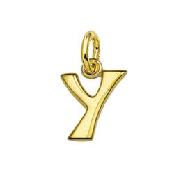 Gouden letter Y hanger