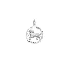 Zilveren sterrenbeeld bedels