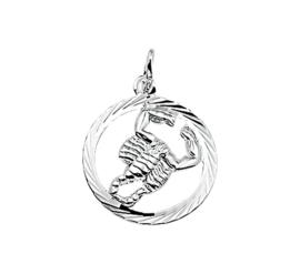 Zilveren bedel met schorpioen sterrenbeeld