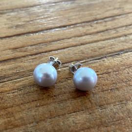 Zilveren oorknoppen parel grijs 6-9 mm