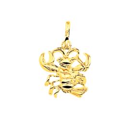 Gouden sterrenbeeld kreeft hanger