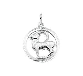 Zilveren bedel met steenbok sterrenbeeld