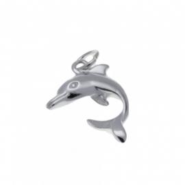 Zilveren bedel dolfijn