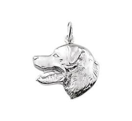 Zilveren bedel labrador hoofd