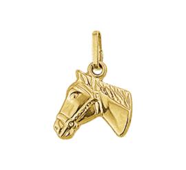 Gouden hanger paardenhoofd tweezijdig