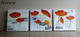 Schilderijen Poppy