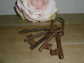 Oude bos sleutels