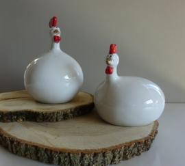Koppel witte kippen