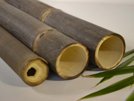 Bamboepaal ZWART Ø 3-4 x 50 cm