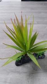 Reptech Plant Thin Succulent