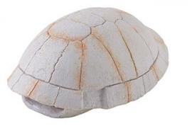 Exo Terra Tortoise Skeleton