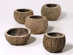 Ourico schalen 8 - 10 cm
