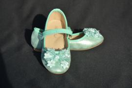 Mint groene schoen