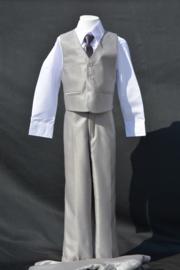 5-delig kostuum lichtgrijs