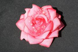 Roze haarbloem