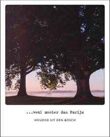 Bossche postcard - 't Bossche Broek - #104