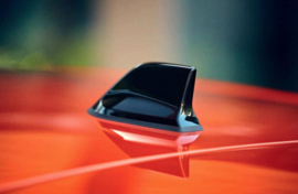 Haaienvin Antenne Clio
