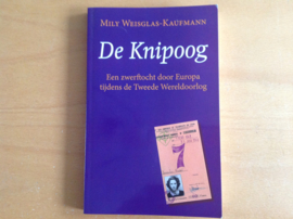 De knipoog - M. Weisglas-Kaufmann