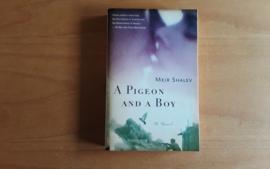 A Pigeon and a Boy - M. Shalev