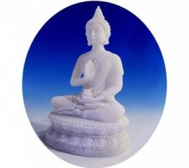 Boeddha beeld met Amrita vaas 16 cm