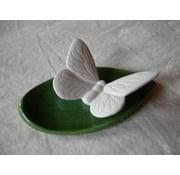 Vlinder met onderlegger