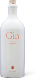 Two Spirits Gin 70cl
