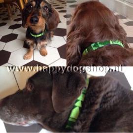 Nata'Chien Halsband Green Maat S (2 cm breed)
