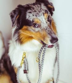 Molly & Stitch Hondenlijn Gray