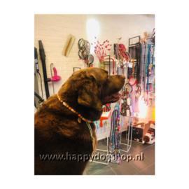 Happy Dog Anti Teken Kralenketting 50 cm