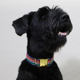 Prunkhund Halsband Blue Maat S