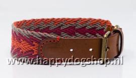 Buddys Dogwear Halsband Peruvian Arrow Orange Maat M