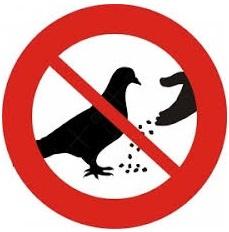 Kunststof bord - Niet voeren