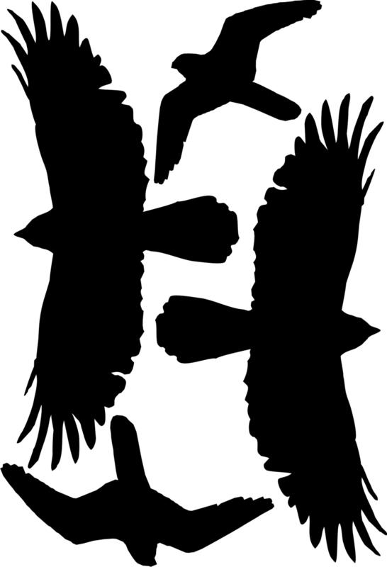 Vogelbescherming's Silhouetten Stickers 3