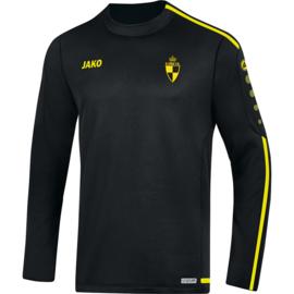 Sweater Striker 2.0 (+ Clublogo LIERSE)