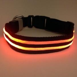 PX1 met LED-verlichting  Oranje