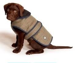 Hondenjas Tweed