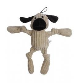 Dennis de Hond