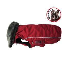Winterjack Amundsen voor Mopshonden  rood